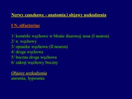 Nerwy czaszkowe - anatomia i objawy uszkodzenia I N. olfactorius 1/ komórki węchowe w błonie śluzowej nosa (I neuron) 2/ n. węchowy 3/ opuszka węchowa.