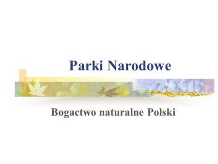 Parki Narodowe Bogactwo naturalne Polski. DRAWIEŃSKI PARK NARODOWY Powierzchnia - 11342 ha, Powierzchnia obszarów ochrony ścisłej - 368 ha Długość szlaków.