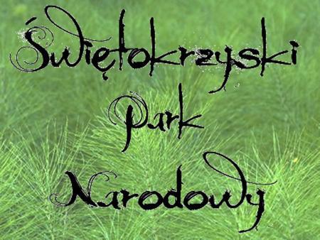 Świętokrzyski Park Narodowy został utworzony 1.05.1950 r. Obecnie teren Parku zajmuje obszar 7626,45 ha, a jego otulina 20786,07 ha. W skład Parku wchodzą: