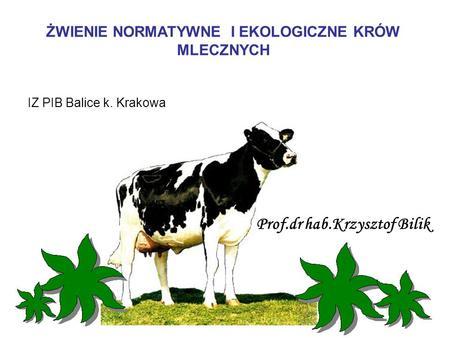 ŻWIENIE NORMATYWNE I EKOLOGICZNE KRÓW MLECZNYCH IZ PIB Balice k. Krakowa Prof.dr hab.Krzysztof Bilik.