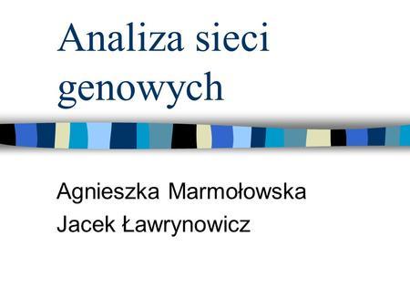 Analiza sieci genowych Agnieszka Marmołowska Jacek Ławrynowicz.
