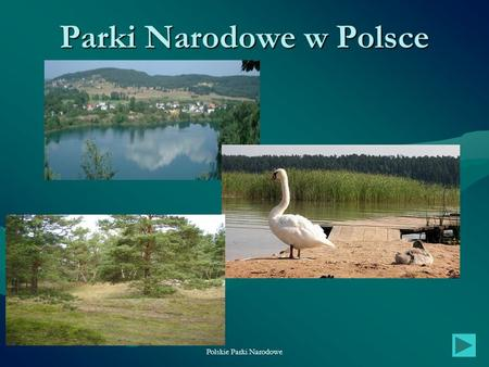 Polskie Parki Narodowe1 Parki Narodowe w Polsce. Polskie Parki Narodowe2 Spis treści 1.Wiadomości ogólne Wiadomości ogólneWiadomości ogólne 2.Rozmieszczenie.