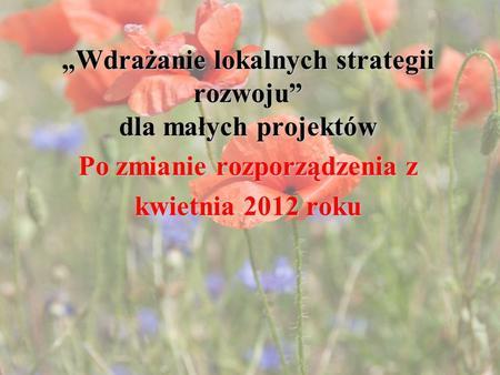 Wdrażanie lokalnych strategii rozwoju dla małych projektów Po zmianie rozporządzenia z kwietnia 2012 roku.