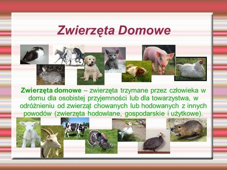 Zwierzęta Domowe Zwierzęta domowe – zwierzęta trzymane przez człowieka w domu dla osobistej przyjemności lub dla towarzystwa, w odróżnieniu od zwierząt.
