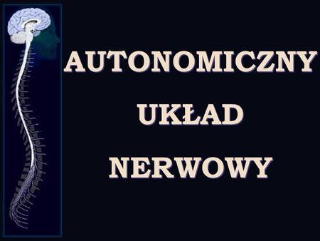 AUTONOMICZNY UKŁAD NERWOWY. UKŁAD NERWOWY Ośrodkowy układ nerwowy Obwodowy układ nerwowy Mózg Rdzeń kręgowy Ruchowy Czuciowy Somatyczny Autonomiczny Współczulny.
