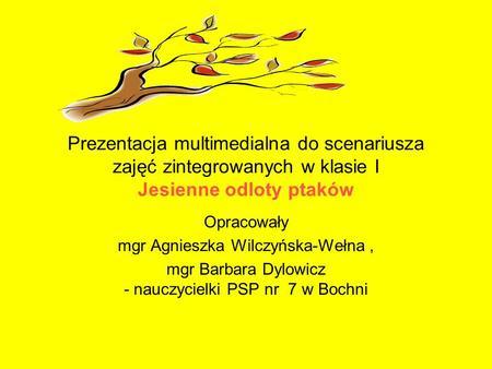 Prezentacja multimedialna do scenariusza zajęć zintegrowanych w klasie I Jesienne odloty ptaków Opracowały mgr Agnieszka Wilczyńska-Wełna, mgr Barbara.
