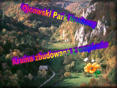 Chociaż Ojcowski Park Narodowy to najmniejszy park Narodowy w Polsce, nie znaczy to, że nie jest wart zwiedzenia. Park ten posiada na swoim terenie wiele.