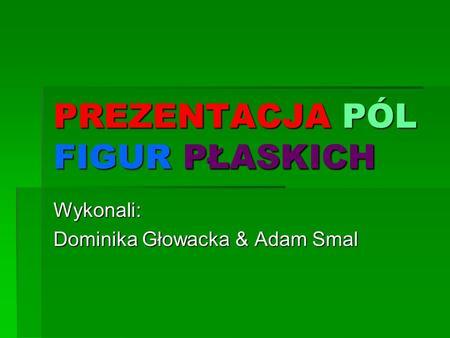 PREZENTACJA PÓL FIGUR PŁASKICH Wykonali: Dominika Głowacka & Adam Smal.