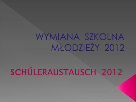 W dniu 24.09.2012 o godzinie 18:30 serdecznie powitaliśmy w naszym gimnazjum grupę uczniów wraz z nauczycielami i opiekunami z Pfeffenhausen, którzy przybyli.