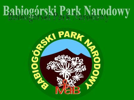 Babiogórski Park Narodowy znajduje się w południowej Polsce. Powierzchnia Parku wynosi: 33,92km 2 Siedziba parku to Zawoja Mapka Parku.
