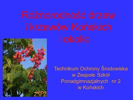 Technikum Ochrony Środowiska w Zespole Szkół Ponadgimnazjalnych nr 2 w Końskich Różnorodność drzew i krzewów Końskich i okolic.
