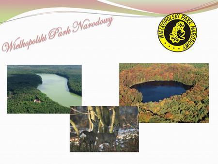  rok powstania: 1957  cel: trwałe zachowanie typowych form naturalnego środowiska przyrodniczego -(różnorodność form polodowcowej rzeźby terenu, jezior.